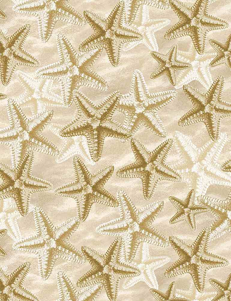 Welcome to the Beach C8394 Starfish on Sand from Timeless Treasures