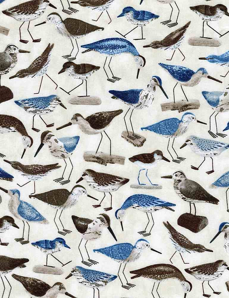 Welcome to the Beach C8290 Water Birds from Timeless Treasures