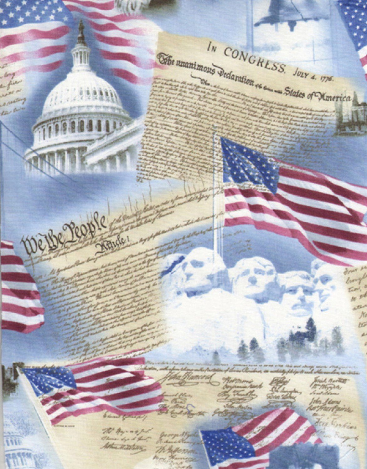 Born in the USA C9505-Sky Timeless Treasures Fabrics