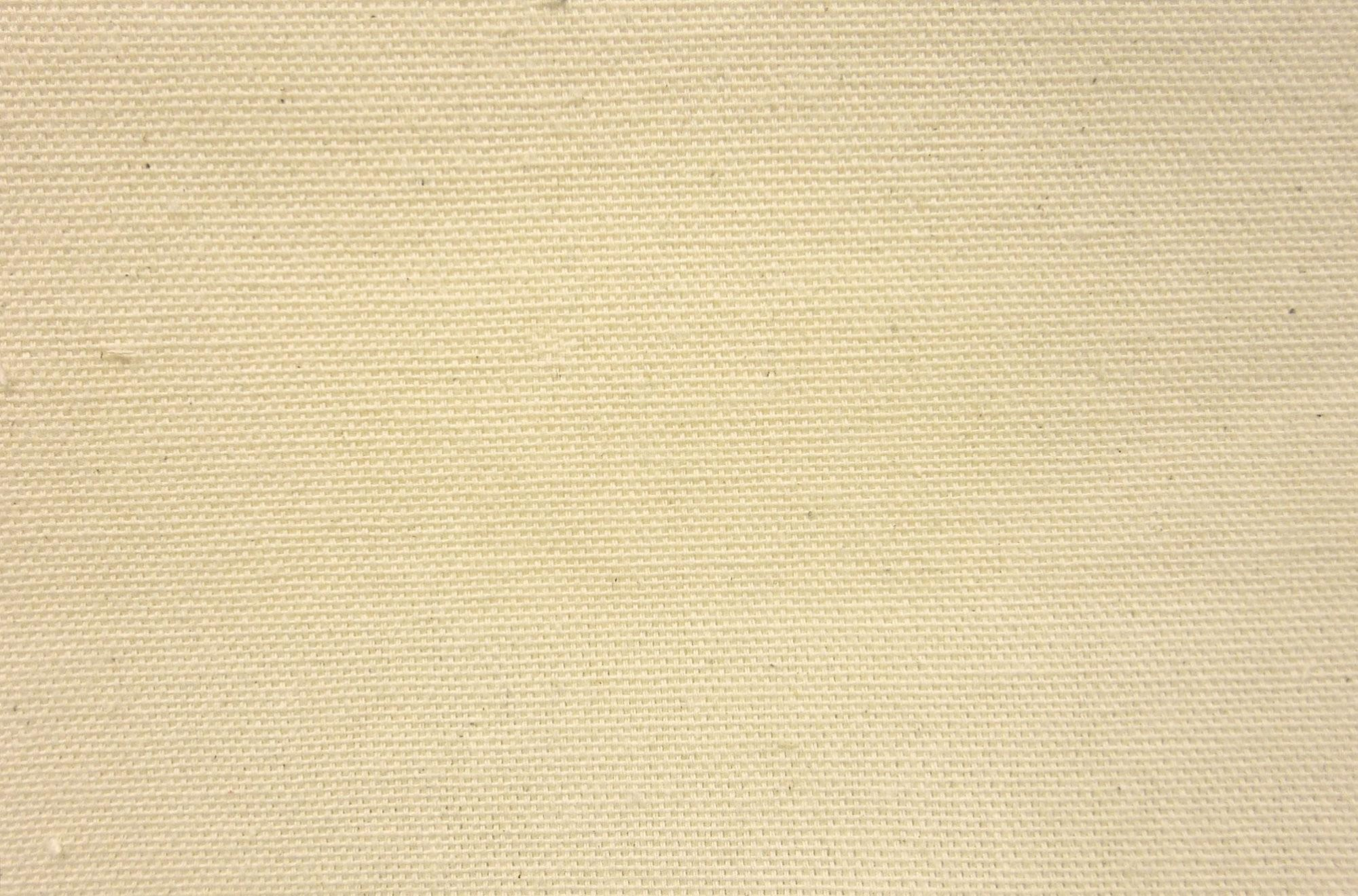Duck Canvas Cloth Natural from James Thompson & Co