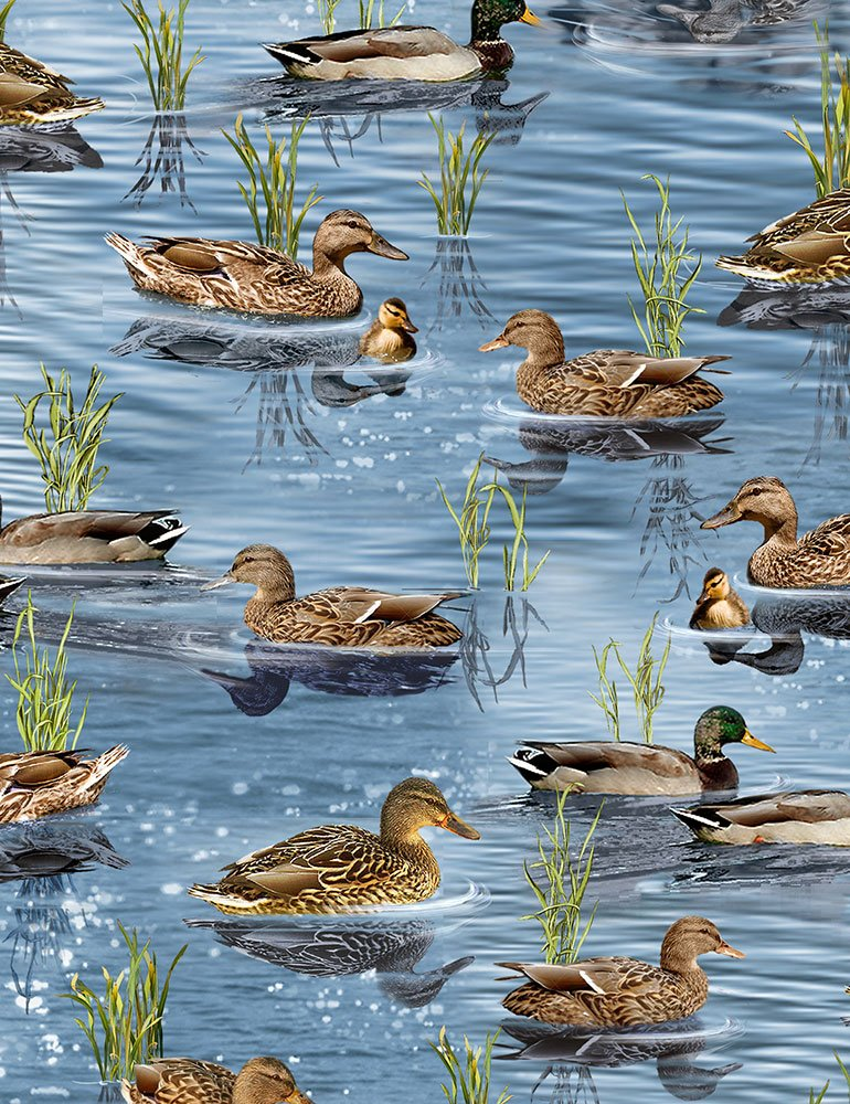 Ducks Nature-C6406 from Timeless Treasures