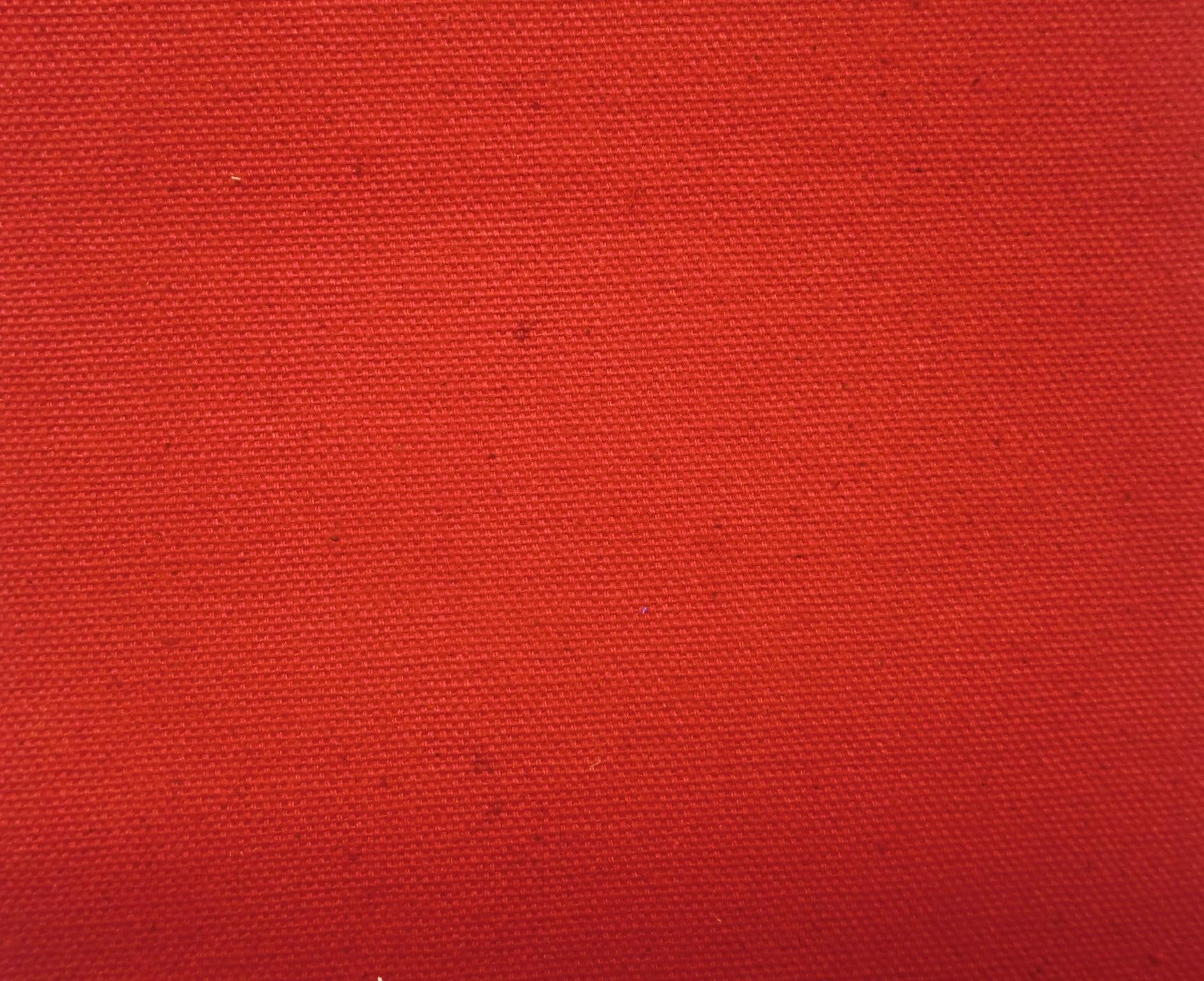 Duck Canvas Cloth Red from James Thompson & Co