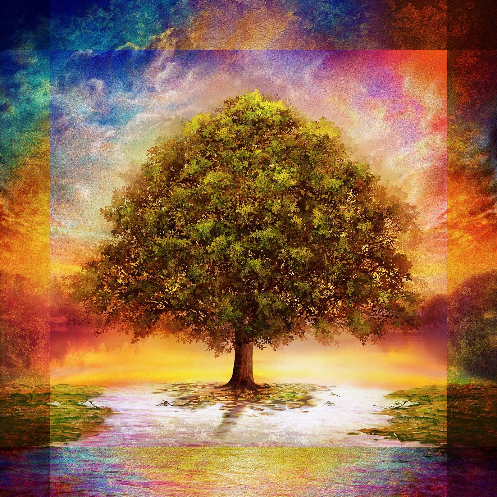 Tree of Life 60 x 60 Panel - Multi