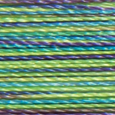 Isacord 1000m Polyester Variegated - Emerald City (9971)
