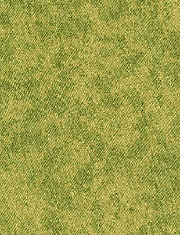 Birch Song C7412-GREEN Leaf Texture