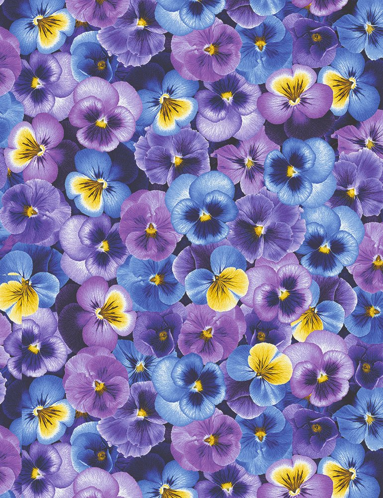 Pansy Paradise Packed Pansies C7722-PURPLE