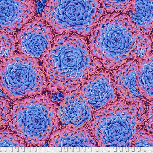 Kaffe Fassett Collective - Succulent - Blue PWPJ091.BLUEX