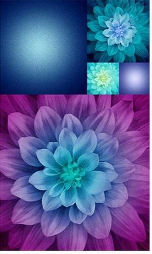 Kablooms Q4497-532 Aurora Spectrum Print 27 Panel