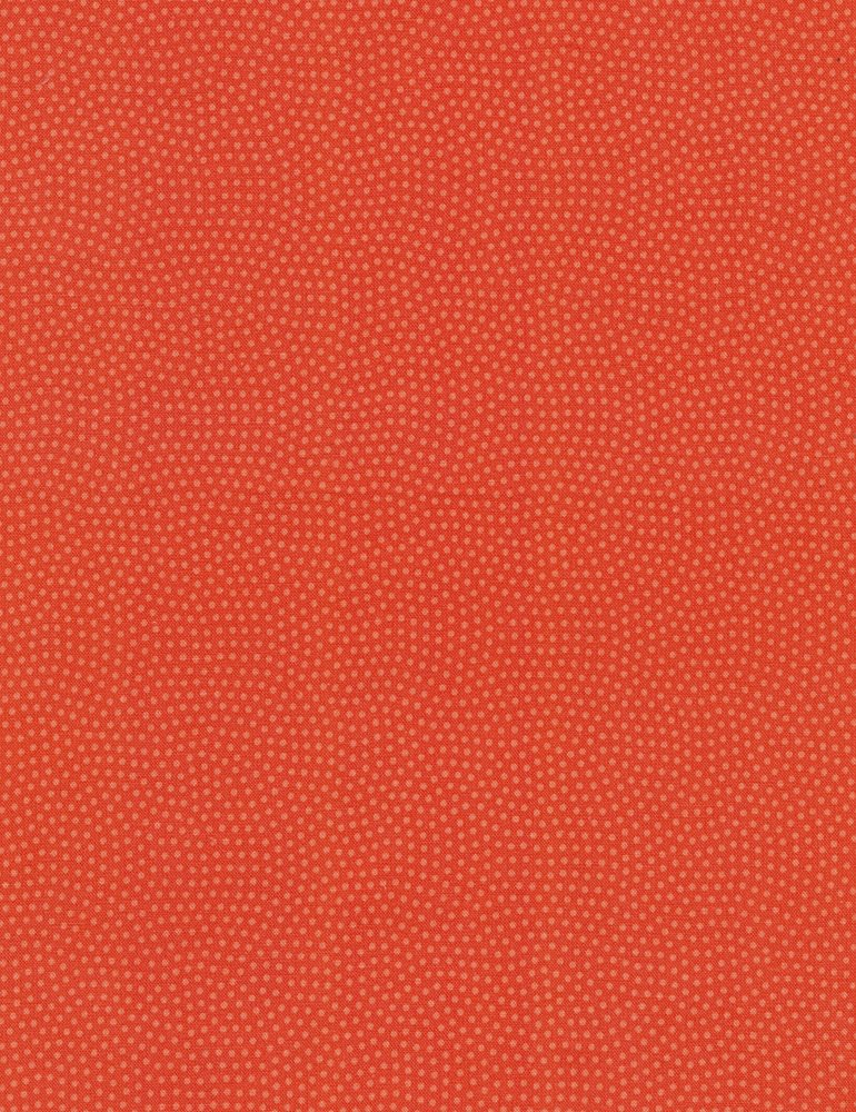 Spin Basic C5300-CORAL
