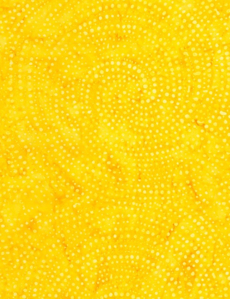 Tonga Color Wheel Rainbow Batik B2336-MANGO