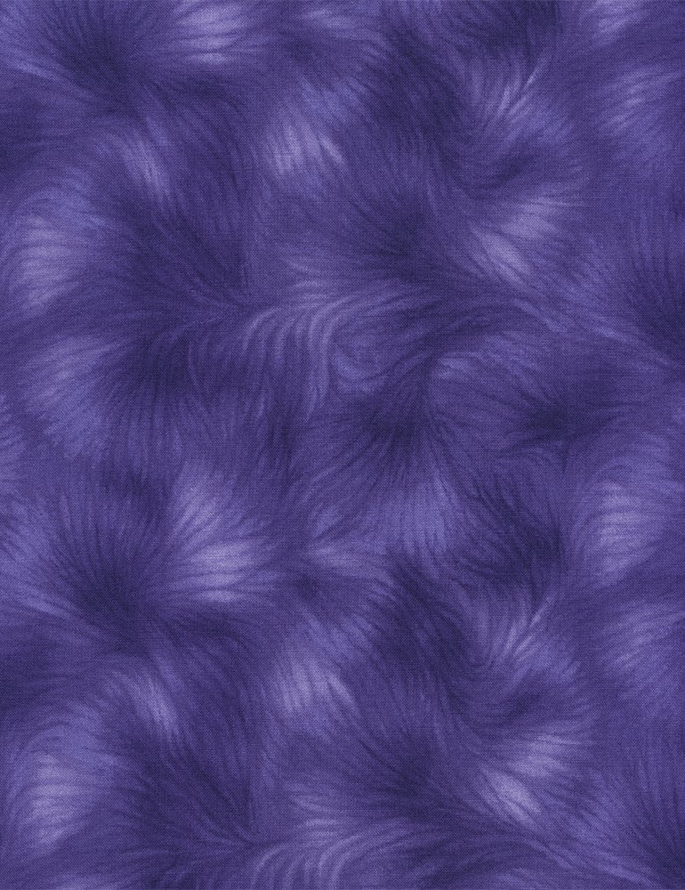 Viola Basics C4459-PURPLE