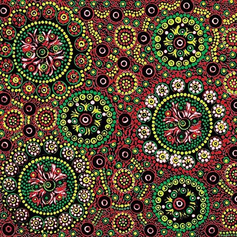 Aboriginal Wild Desert Flowers - Red