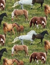 Farmstead Horses 729