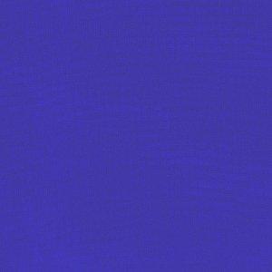 SLTX COTTON SWEATSHIRT FLEECE ROYAL