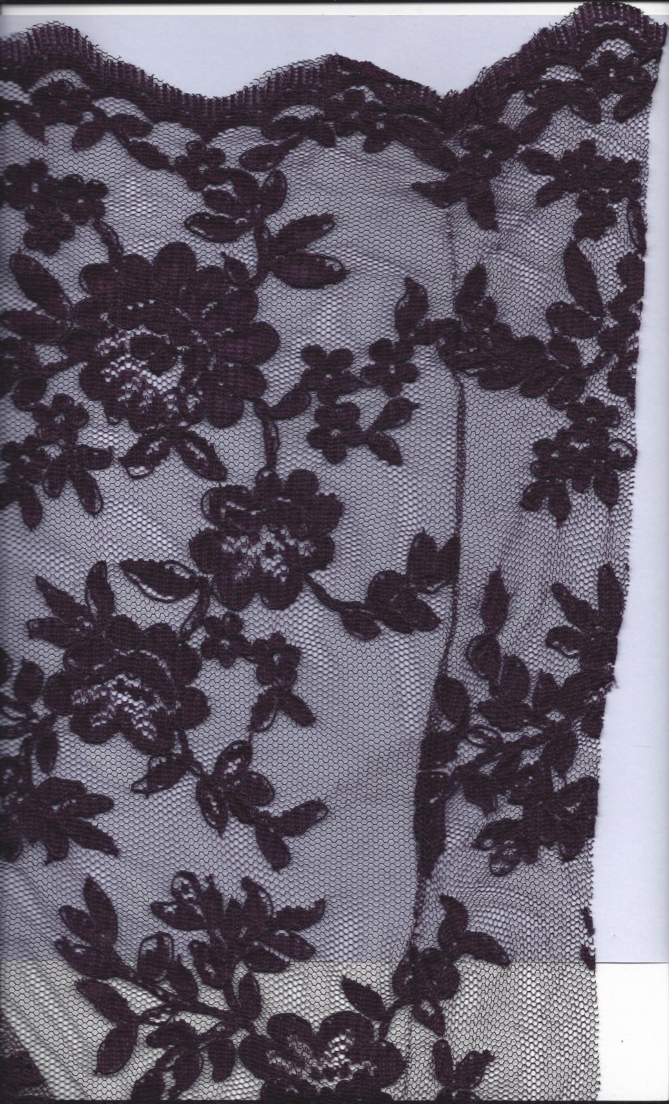 ACC 52446/17 CORDED LACE PLUM