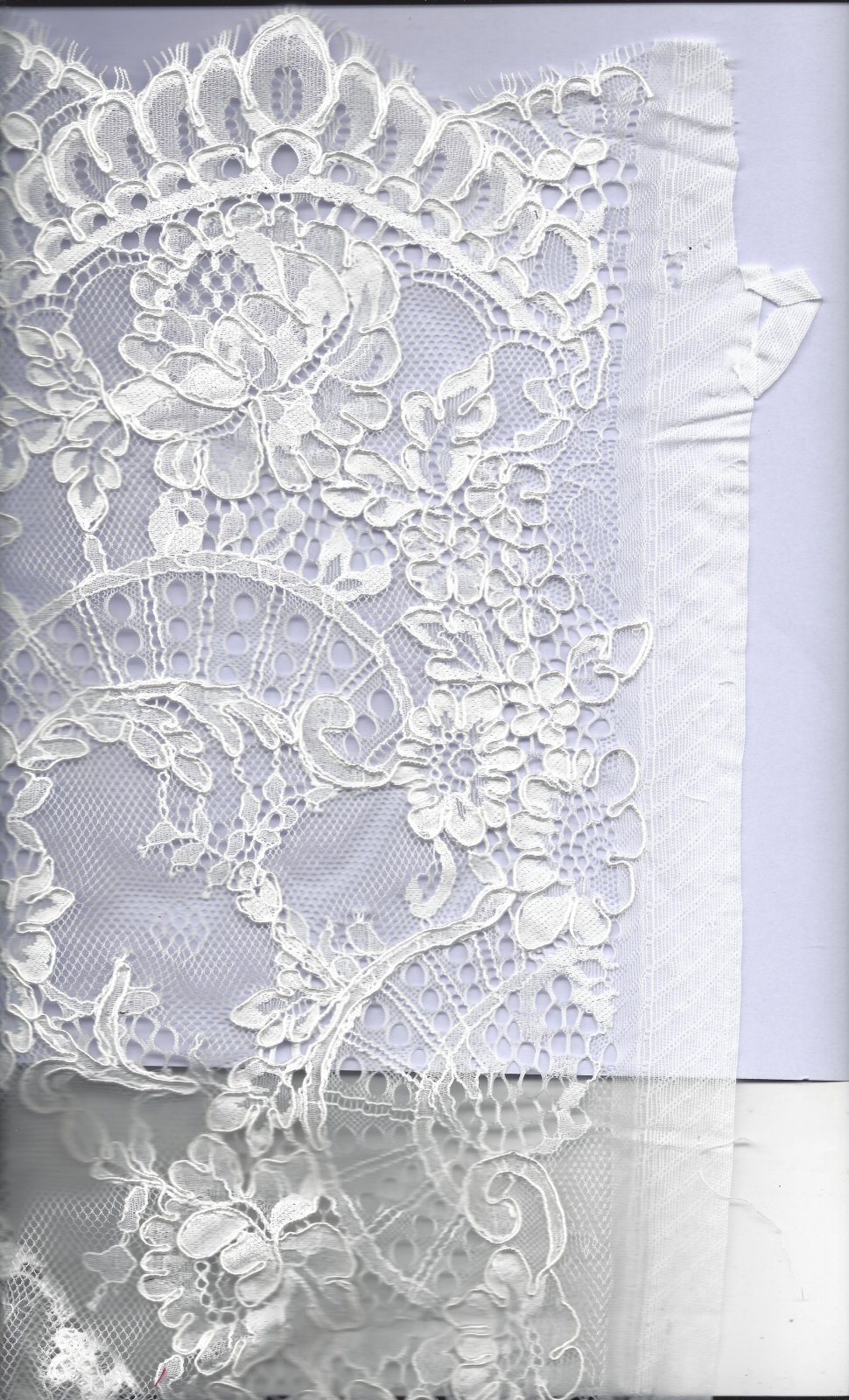 ACC 52556/3 CORDED LACE
