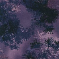 RK Enchanted Pines -Boysenberry