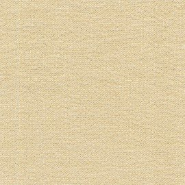 EES CLOUD 9 GLIMMER SOLIDS 9004 CHAMPAGNE