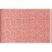 Madeira Silk Floss 0304