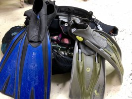 Old fins become rigid and lose elasticity