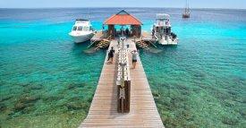 Divi Dock