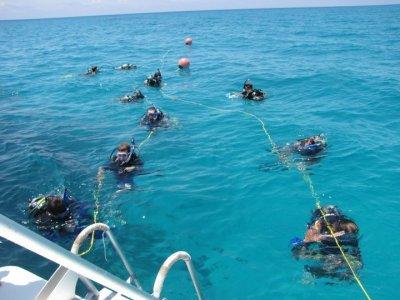 Boy Scout Dive Trips