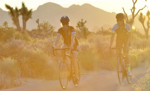 Cycling tours and active vacations in top destinations