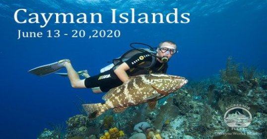 Cayman Aggressor 2020