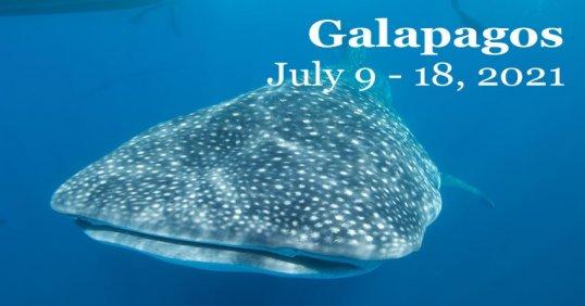 Galapagos 2021