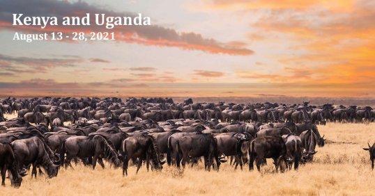 Kenya and Uganda