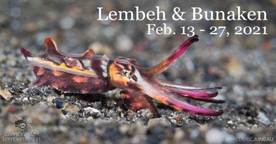 Lembeh & Bunaken 2021