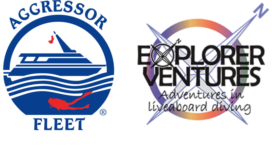 Agressor fleet and Explorer Ventures