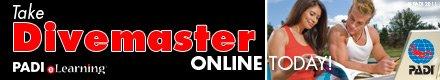 Start Divemaster Online Today!