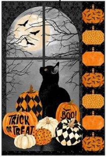 black cat and pumpkins kit