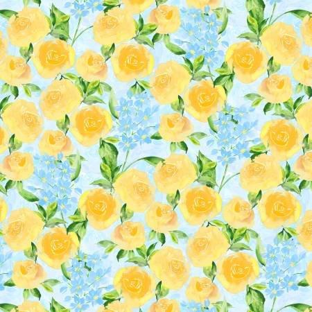 Bloom True yellow charlotte grace
