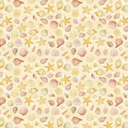 Sand Coral Seashells