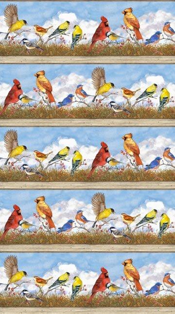 30112 Bird Song Border - DP22431-41