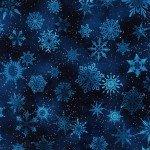 Winter's Granduer Navy Stars