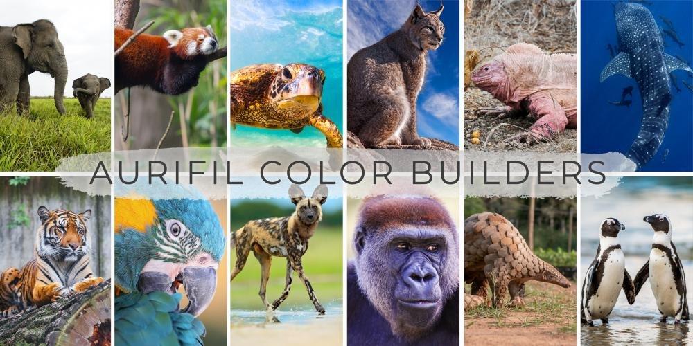 Aurifil Color Builders THREAD CLUB NEW 40 wt Endangered Species