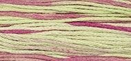 Floss 1126 Coleus