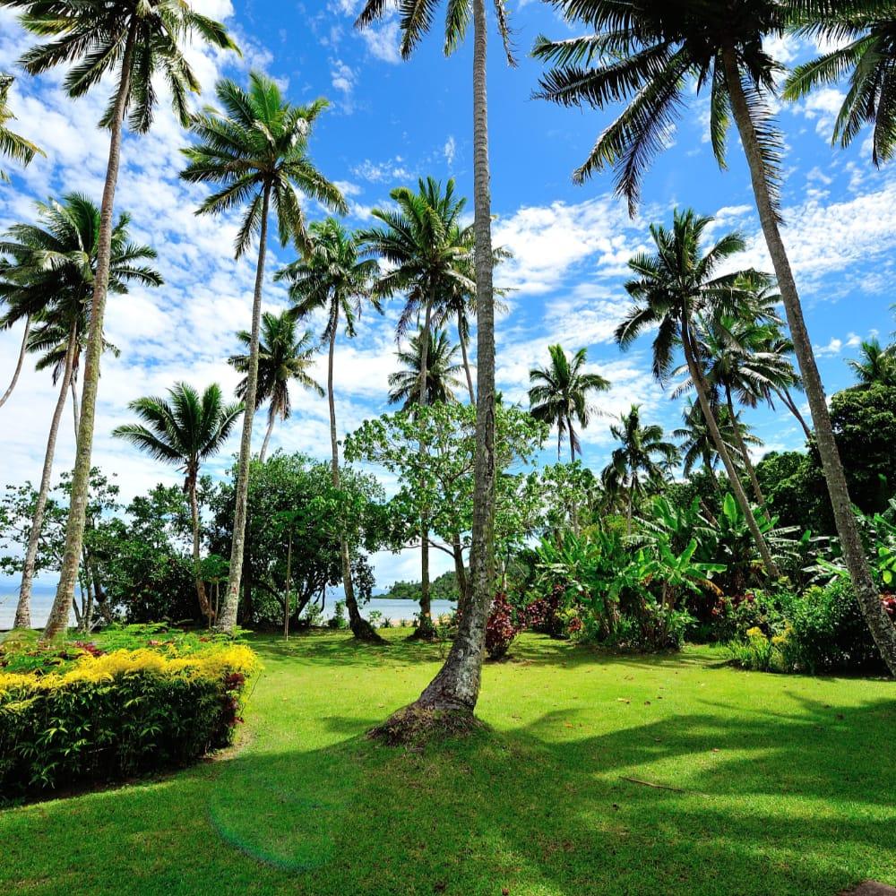Fiji March 11 - 20, 2021