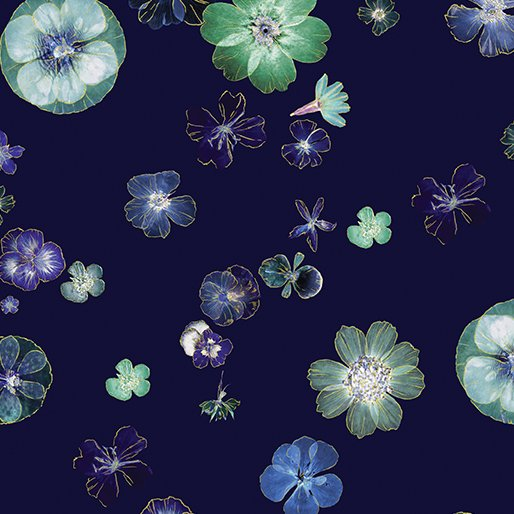 Floral Impressions - Pressed flowers on navy