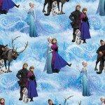 Frozen Chacter Scene