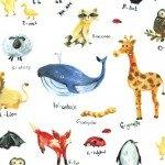 Minky - Animal Alphabet