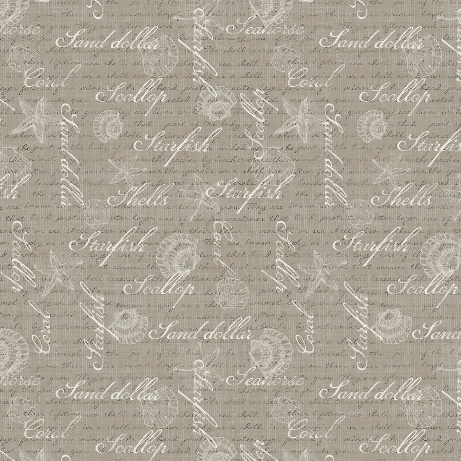 Wilmington Coastal Wishes Words - Taupe (min. order 1 m)