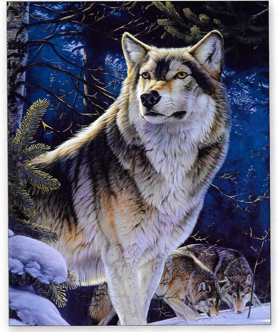 DT-Animal Instincts ML-3063-8C Sentinel Wolf Panel