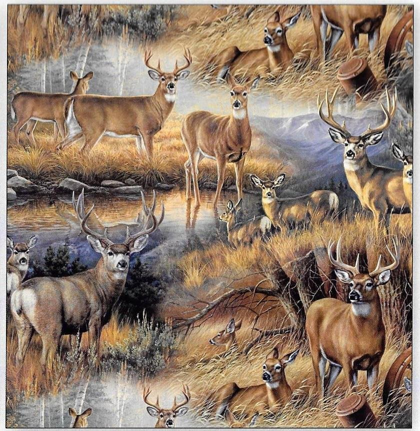 DT-Animal Instincts WW-3146-8C Deer Glance