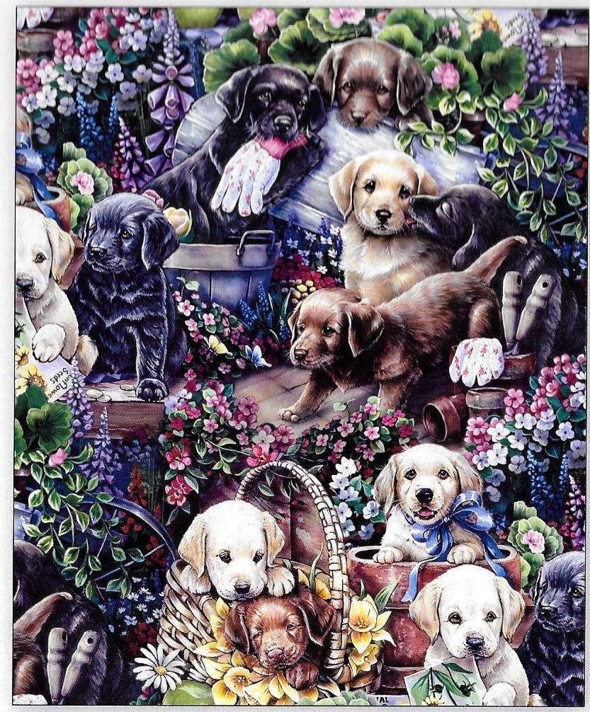 DT-Animal Instincts AL-3470-8C Gardenning Pups