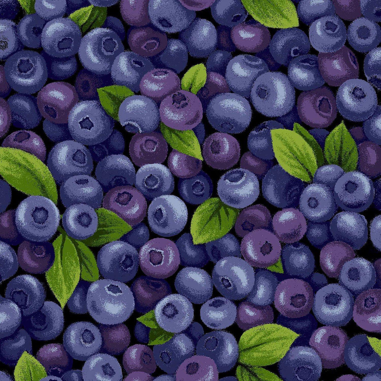 FQ-Farmer John's Garden Party 120-13281 Blueberries