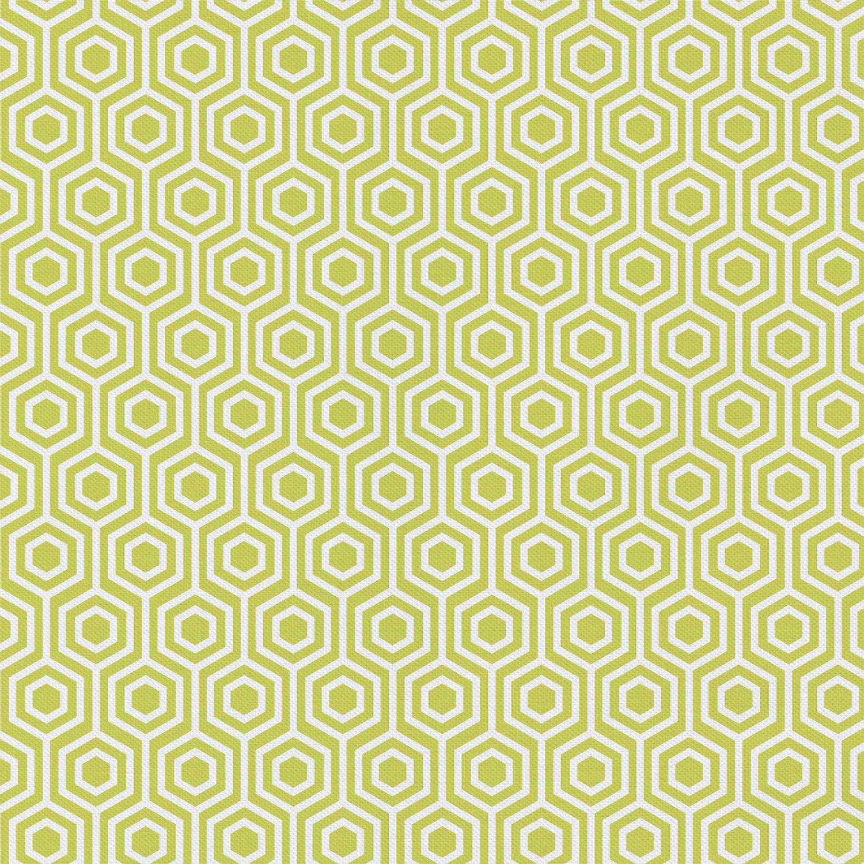PROMO* CF-Contempo Pet 4141106WM-02 Lime - Hexagon
